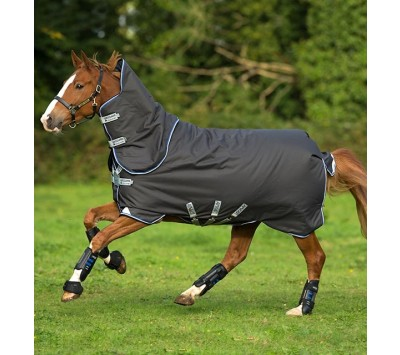 Horseware Amigo Bravo 12 Plus 250g Turnout Rug with Disc Closure