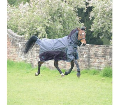 Masta Fieldmasta 100g Fixed Neck Turnout Rug