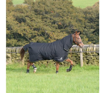 Masta Avante 170g Fixed Neck Turnout Rug
