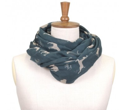Toggi Whisby Printed Scarf