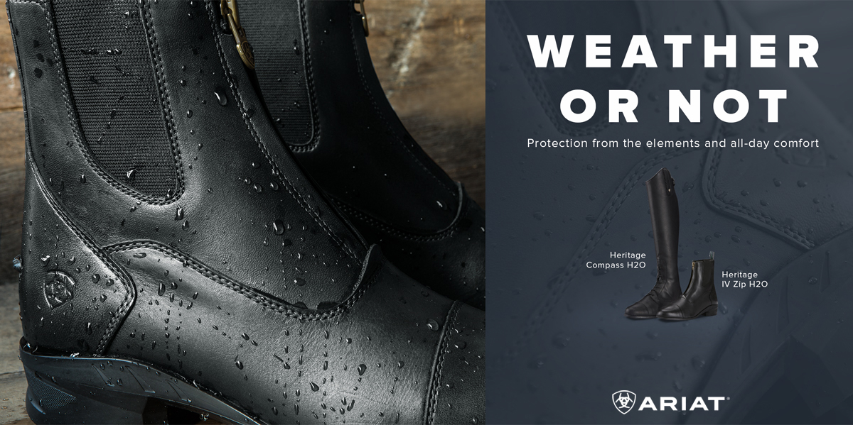 View all Ariat Footwear products