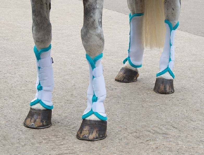 Shires Fly Turnout Socks  - Thomas Irving's equestrian and accessories store  Shires Fly Turnout Socks