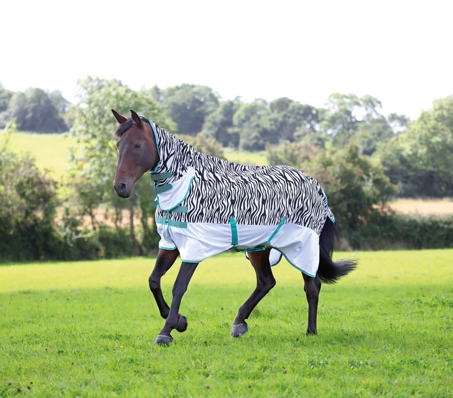 Shires Tempest Original Zebra Fly Combo Fly Rug  - Thomas Irving's equestrian and accessories store  Shires Tempest Original Zebra Fly Combo Fly Rug