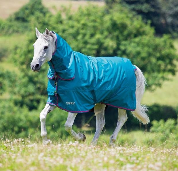 Shires Tempest Original 50g Combo Turnout Rug  - Thomas Irving's equestrian and accessories store  Shires Tempest Original 50g Combo Turnout Rug