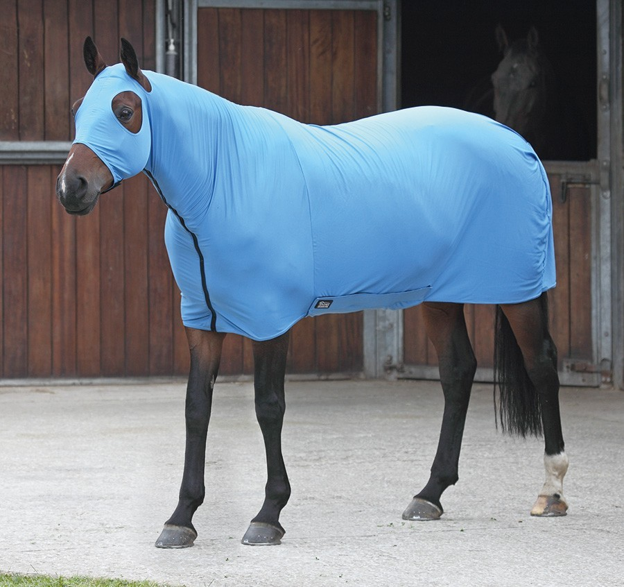 Shires Four Way Stretch Rug  - Thomas Irving's equestrian and accessories store  Shires Four Way Stretch Rug
