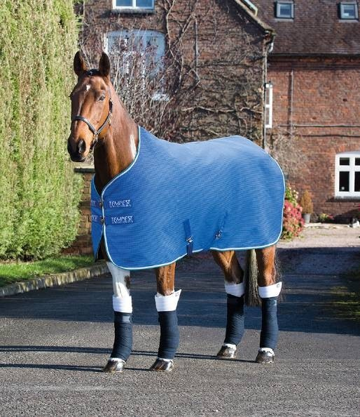 Shires Tempest Original Waffle Rug  - Thomas Irving's equestrian and accessories store  Shires Tempest Original Waffle Rug