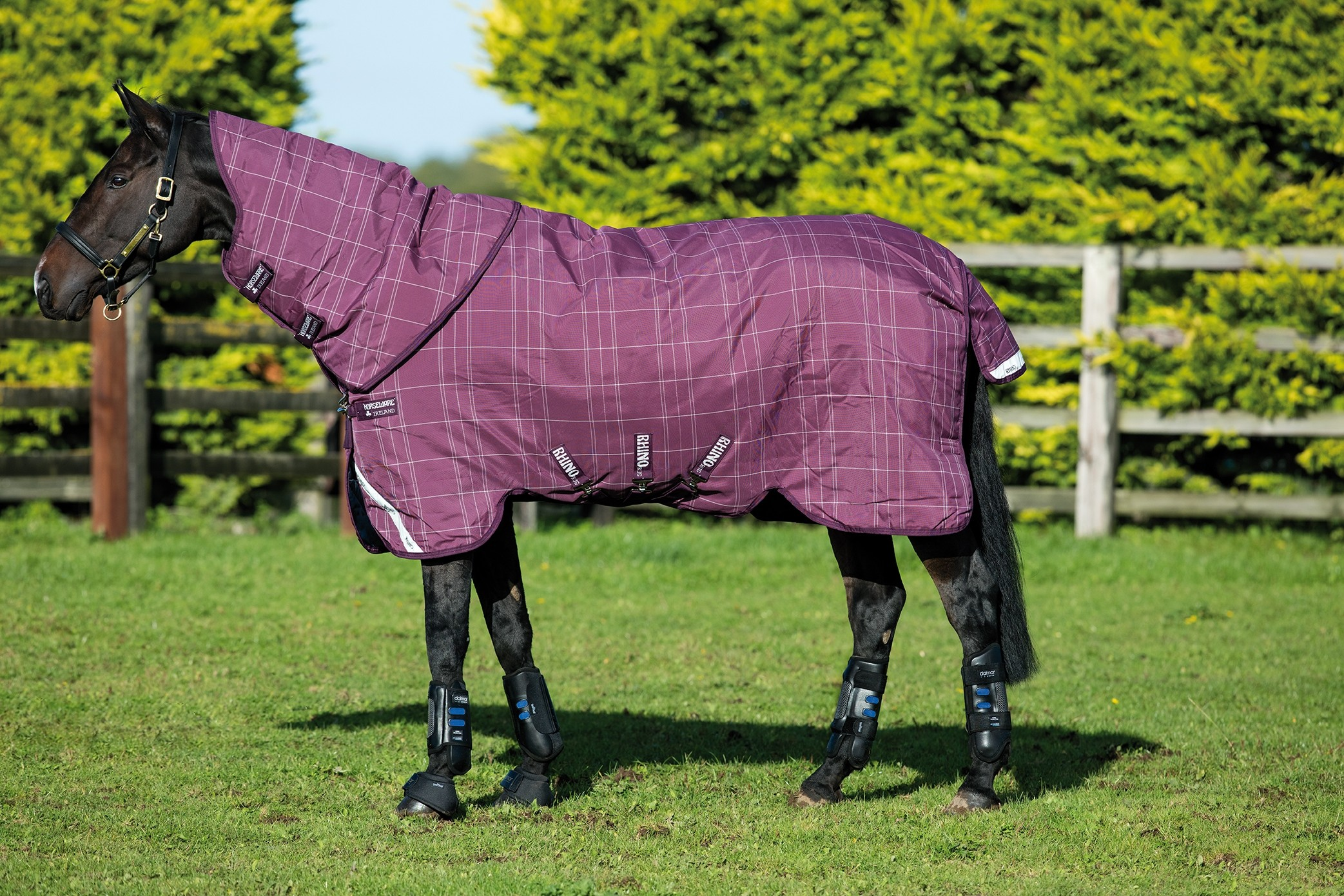 Horseware Rhino Plus with Vari-Layer 250g Turnout Rug  - Thomas Irving's equestrian and accessories store  Horseware Rhino Plus with Vari-Layer 250g Turnout Rug