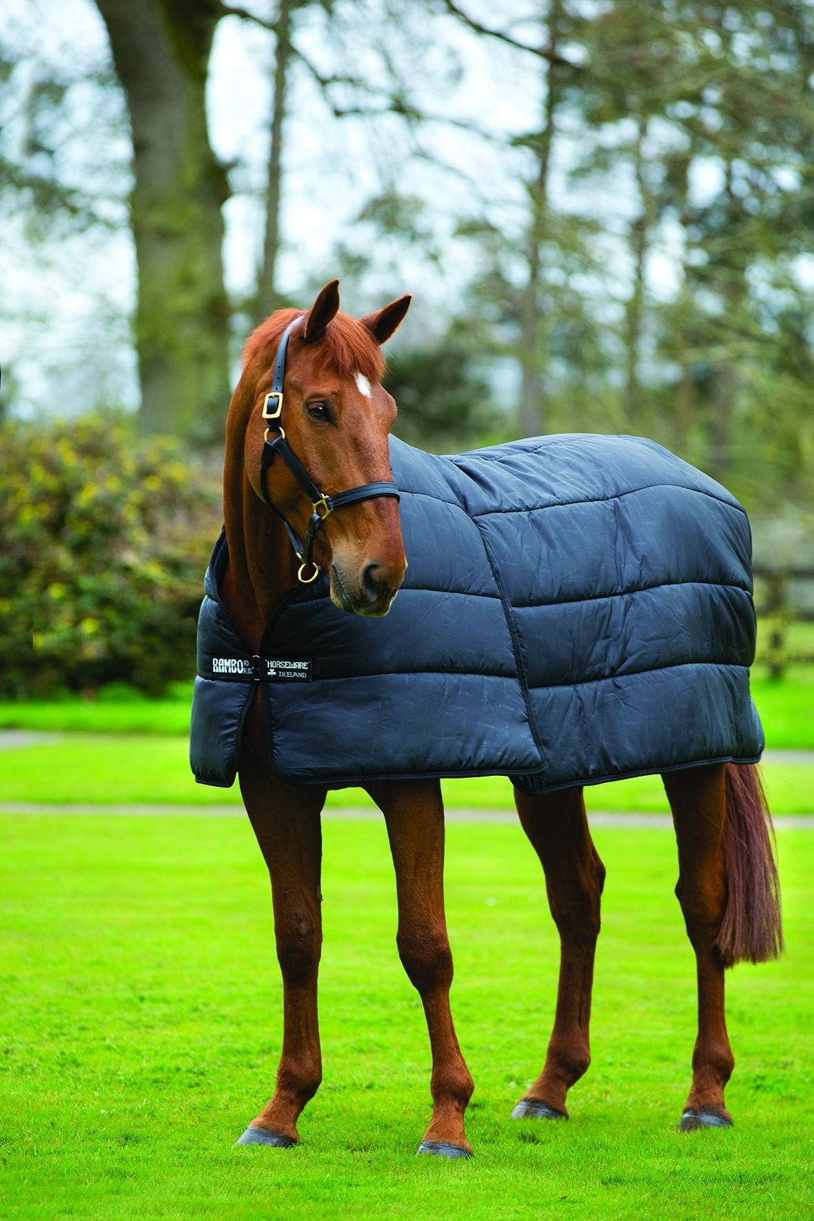 Horseware Optimo 400g Liner  - Thomas Irving's equestrian and accessories store  Horseware Optimo 400g Liner