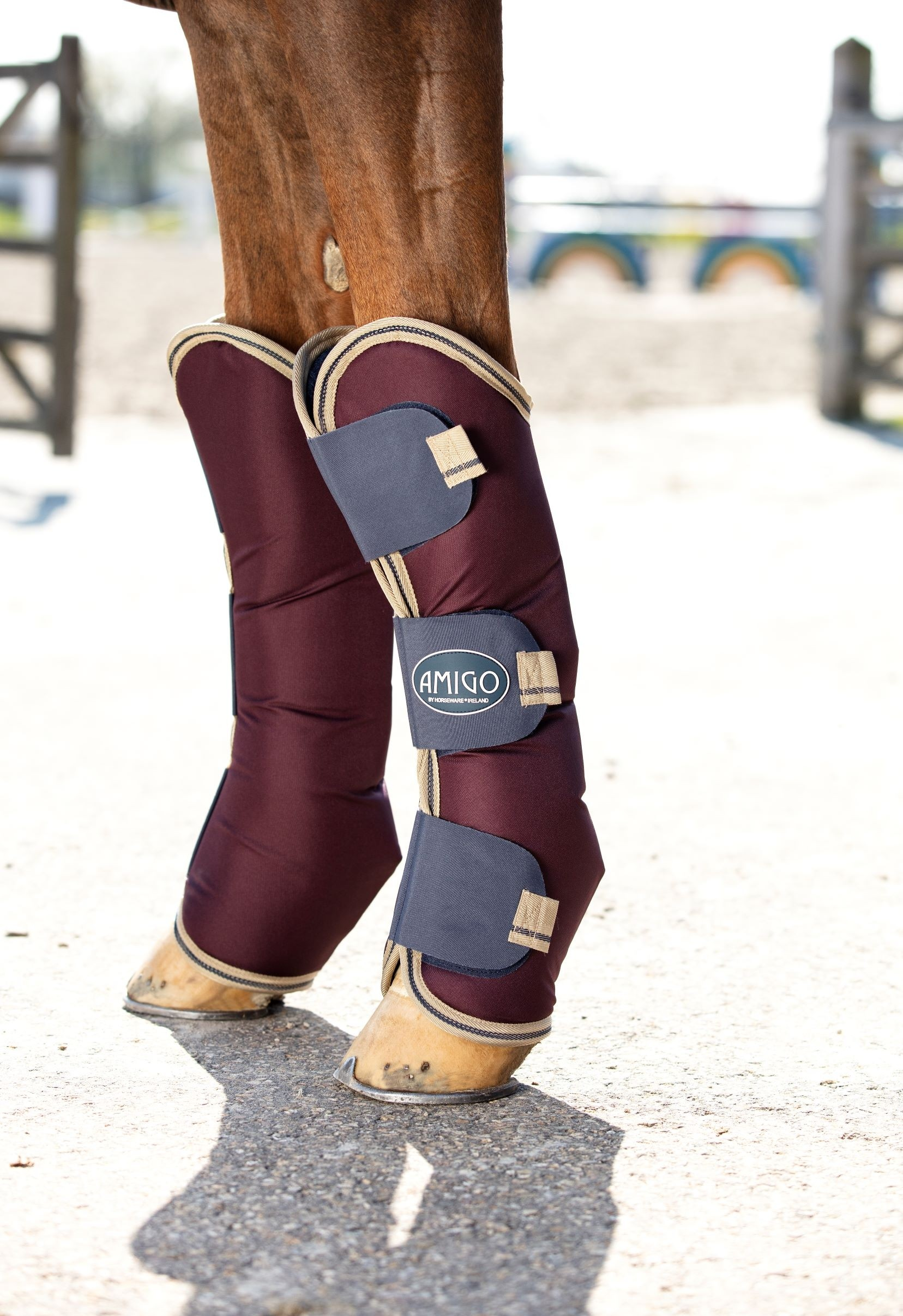 Horseware Amigo Ripstop Travel Boots  - Thomas Irving's equestrian and accessories store  Horseware Amigo Ripstop Travel Boots