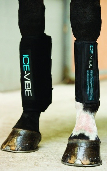 Horseware Ice Vibe Boot  - Thomas Irving's equestrian and accessories store  Horseware Ice Vibe Boot