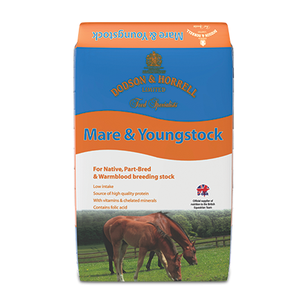 Dodson & Horrell Mare & Youngstock Mix  - Thomas Irving's equestrian and accessories store  Dodson & Horrell Mare & Youngstock Mix