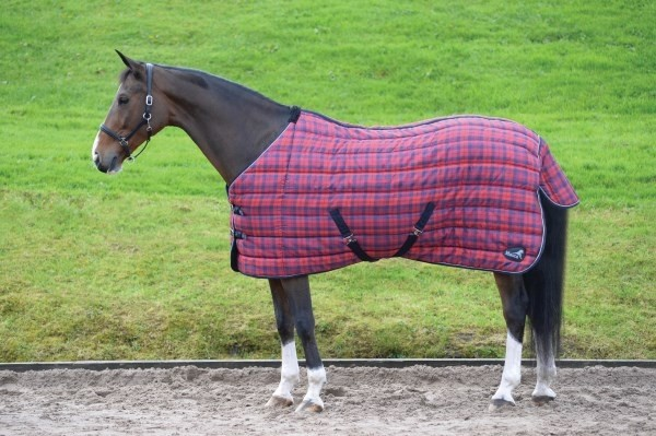 Masta Quiltmasta 350g Stable Rug  - Thomas Irving's equestrian and accessories store  Masta Quiltmasta 350g Stable Rug