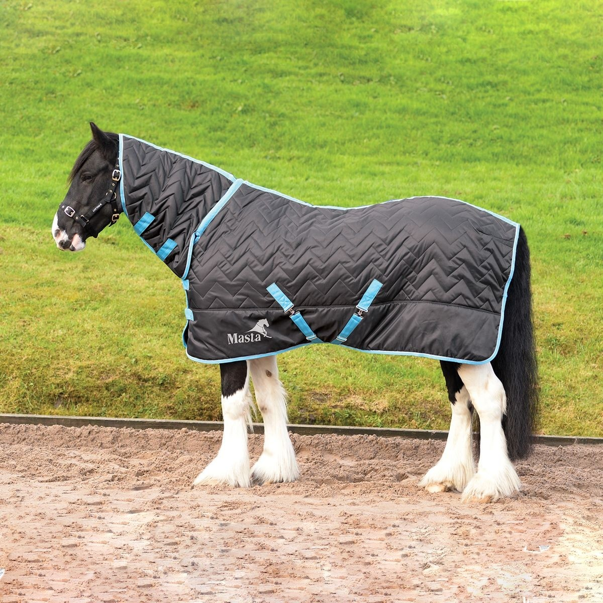 Masta Avante 300g Fixed Neck Stable Rug  - Thomas Irving's equestrian and accessories store  Masta Avante 300g Fixed Neck Stable Rug