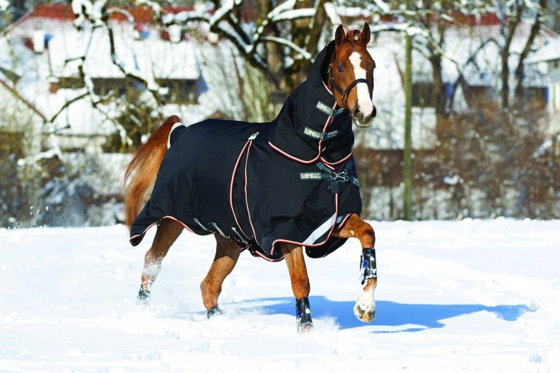 Horseware Rambo Optimo Turnout Rug  - Thomas Irving's equestrian and accessories store  Horseware Rambo Optimo 0g Turnout Rug with Free Neck
