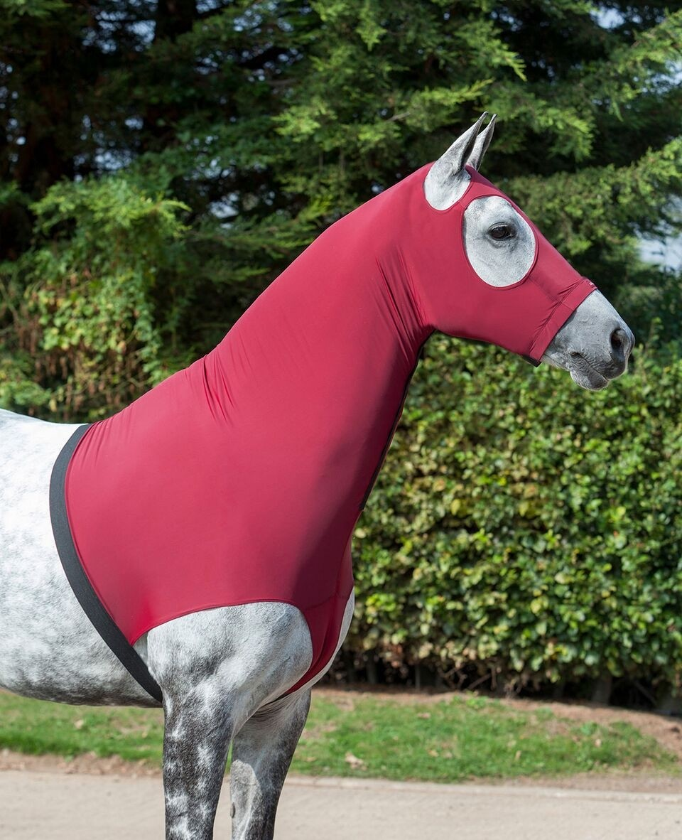 LeMieux Lycra Hood  - Thomas Irving's equestrian and accessories store  LeMieux Lycra Hood