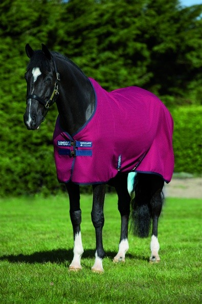Horseware Rambo Techni Waffle Cooler  - Thomas Irving's equestrian and accessories store  Horseware Rambo Techni Waffle Cooler