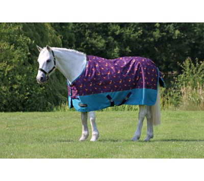 StormX Original Patrick the Pheasant Turnout Rug
