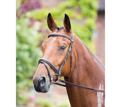 Shires Rossano Dressage Bridle with Flash