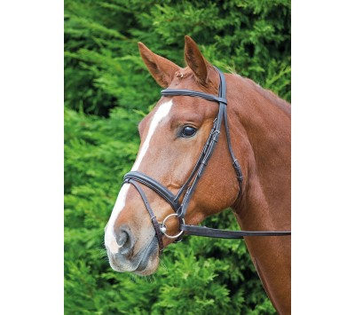 Shires Aviemore Comfort Fit Bridle with Flash