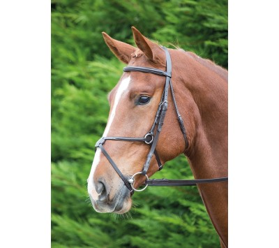 Shires Aviemore Mexican Grackle Bridle