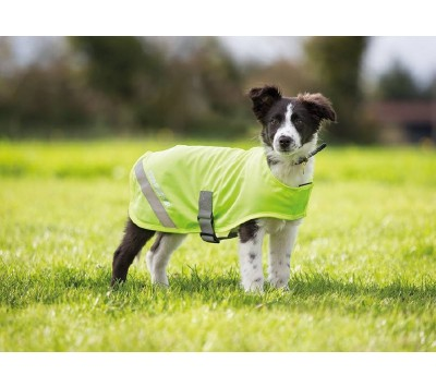 Shires Equi-Flector Dog Safety Vest