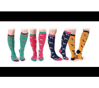 Shires Everyday Adults Socks