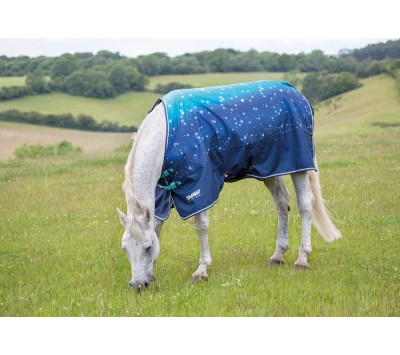 Shires Tempest Original 100g Turnout Rug