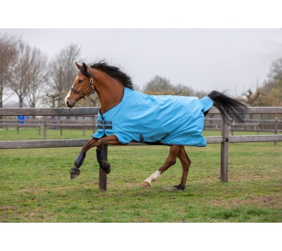 Horseware Amigo Hero 900D Lite (0g) Turnout