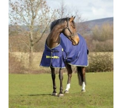 Asker 200g Turnout Rug