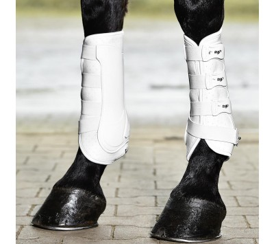 Busse Dressage Pro Tendon Boot