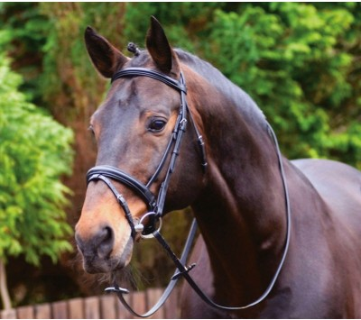Caldene Black Label Crank Noseband Bridle