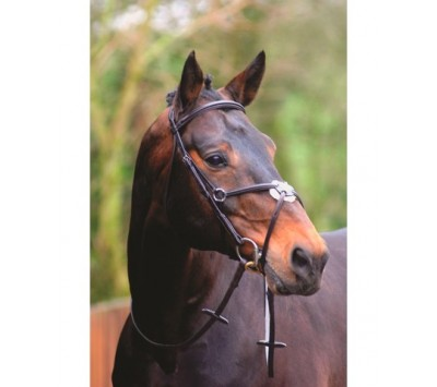 Caldene Black Label Grackle Bridle