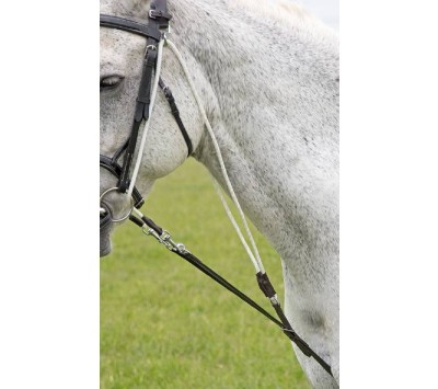 Shires Blenheim De Gogue Training Aid