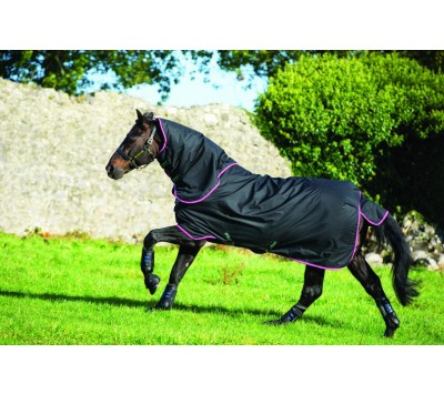Horseware Amigo Hero 6 Plus 200g Turnout Rug