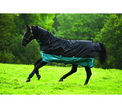 Horseware Amigo Mio All-In-One 200g Turnout Rug