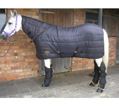 Gallop Maverick 150g Dual Stable/Under Rug