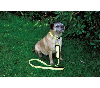 Masta Woofmasta Flash Dog Lead